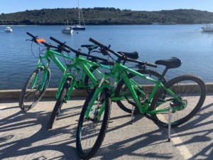 Rent e bicycle in Medulin Istria